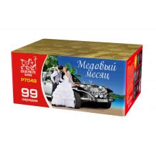 Салют МЕДОВЫЙ МЕСЯЦ Р7049